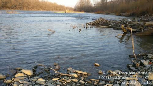 Malul Râului Tisa la Teceul Mic