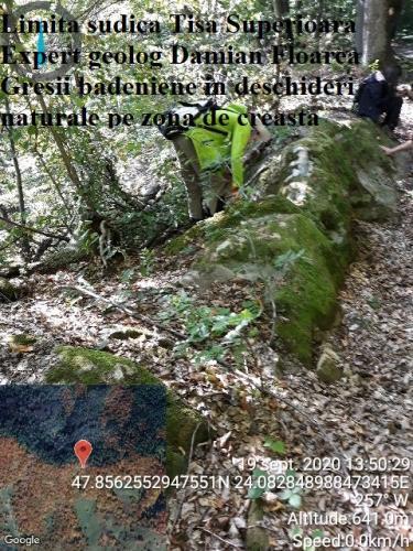 Gresii badeniene