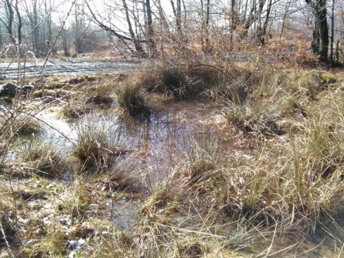 Fig. 10. Acumulari de apa pe malul stang