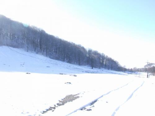 Pajiște intre DN 19 si pădure (zona Carierei Pricop)