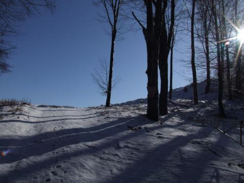 Traseul spre terasa superioara a Carierei Pricop