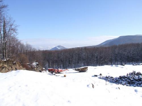 Zona vestica a organizării Carierei Pricop