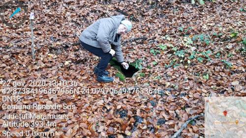 La izvorul cu apa sulfuroasă din pădurea Ronișoara
