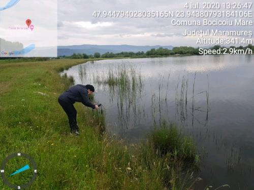 Măsurători ale pH-ului apei lacului Teplițe din apropierea Tisei