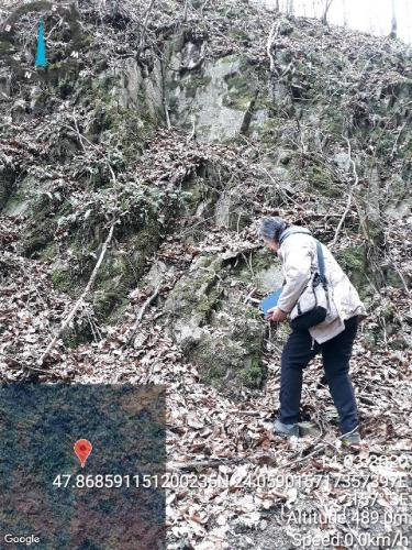 Nivelul de tufuri fine dinspre vale înspre amonte