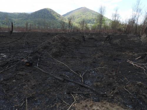 incendierea zavoiului tisei_15042020_Remeti (1)
