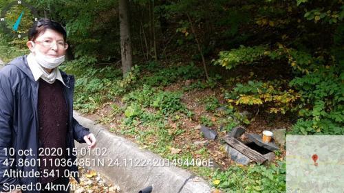 Fig. 1. Prelevarea probelor de apă freatică în pădurea Ronișoara